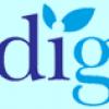 MediGold İş Başvurusu
