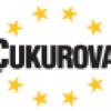 Çukurova Holding İş Başvurusu
