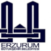 Erzurum Büyükşehir Belediyesi İş Başvurusu