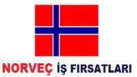 Norveç İş Başvurusu