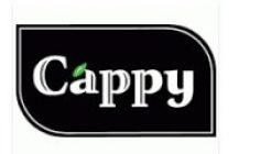 Cappy İş Başvurusu