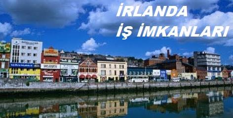 İrlanda İş Başvurusu